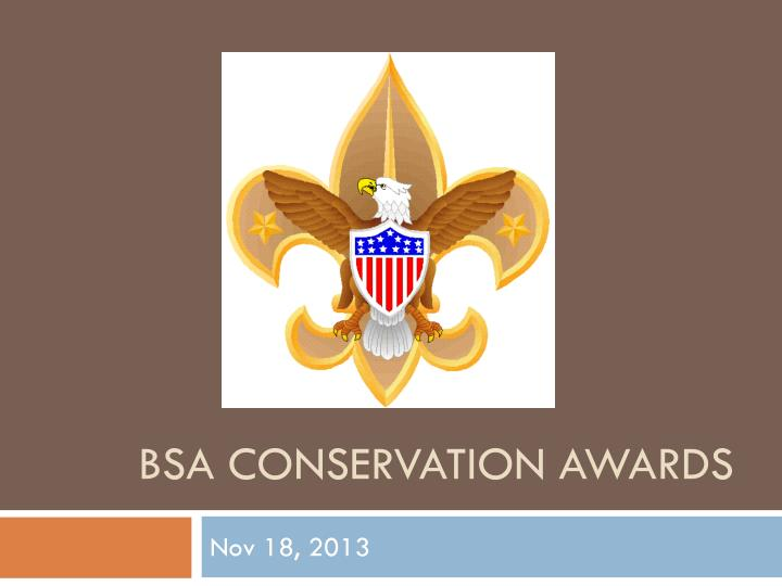 bsa conservation awards n.