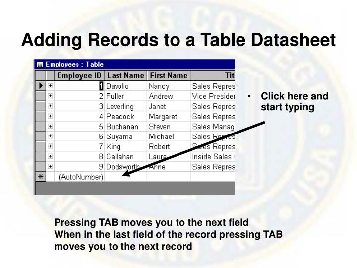 Adding Records to a Table Datasheet