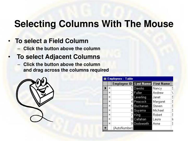 Selecting Columns With The Mouse