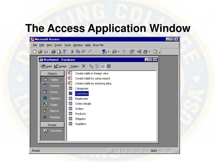 The Access Application Window