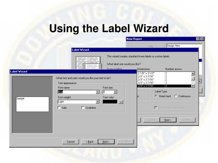 Using the Label Wizard