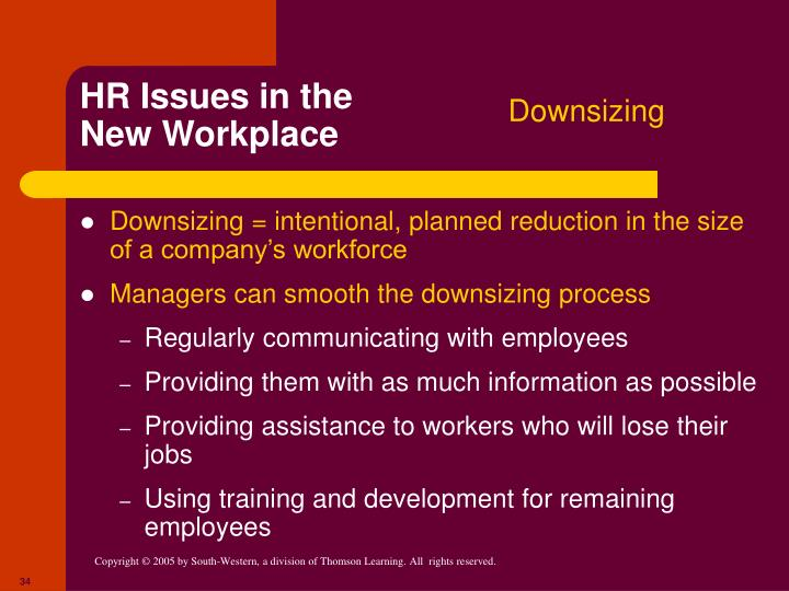 HR Issues in the New Workplace