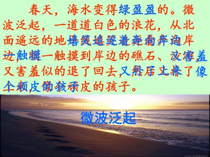 春天,海水变得绿盈盈的。微波泛起,一道道白色的浪花,从北面遥远的地平线嬉笑着追逐着奔向岸边,刚一触摸到岸边的礁石、沙滩,又害羞似的退了回去,然后又扑了上来,像个顽皮的孩子。
