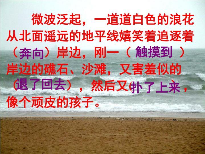 微波泛起,一道道白色的浪花从北面遥远的地平线嬉笑着追逐着(  )岸边,刚一(