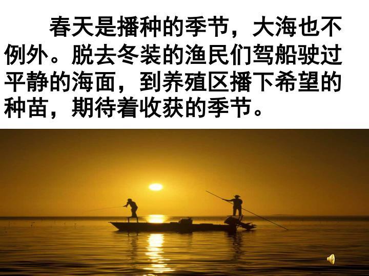 春天是播种的季节,大海也不例外。脱去冬装的渔民们驾船驶过平静的海面,到养殖区播下希望的种苗,期待着收获的季节。