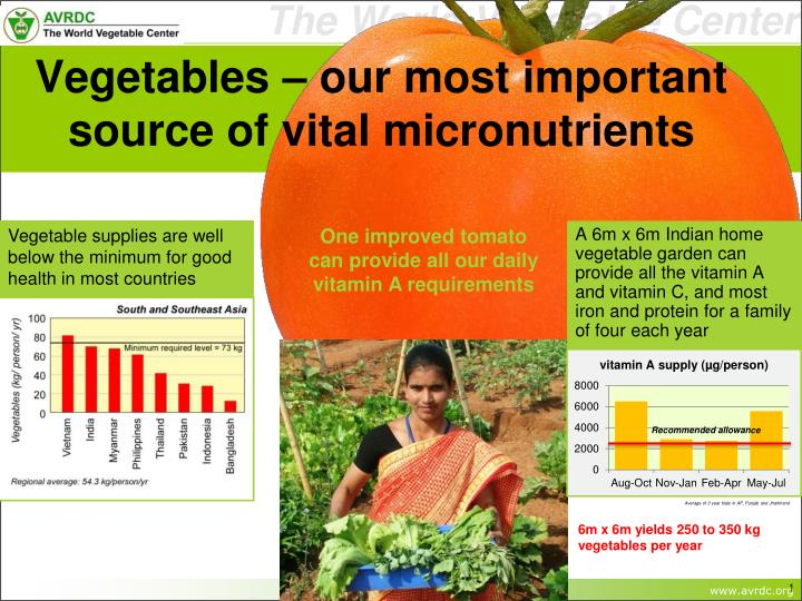 vegetables our most important source of vital micronutrients n.