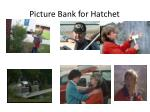 picture bank for hatchet