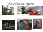 picture bank for hatchet1
