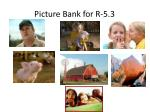 picture bank for r 5 3