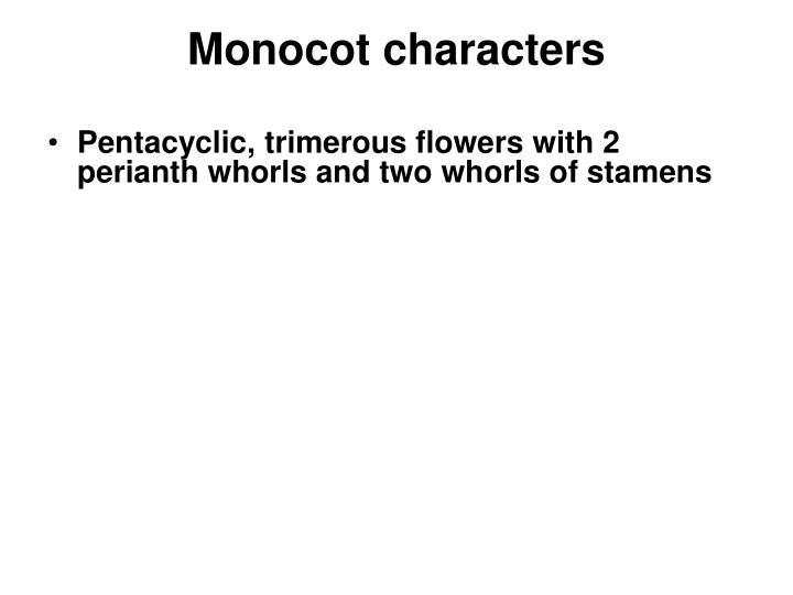 Monocot characters