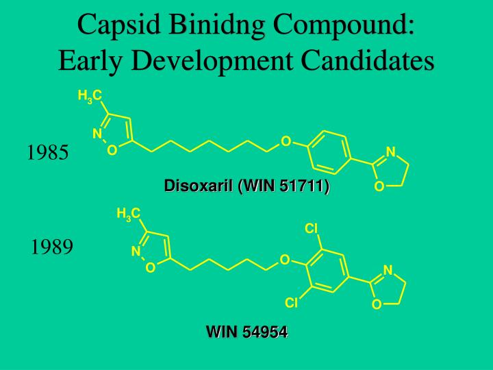 Capsid Binidng Compound: Early Development Candidates