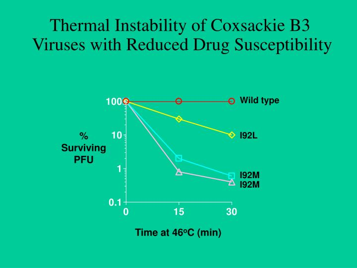Thermal Instability of Coxsackie B3