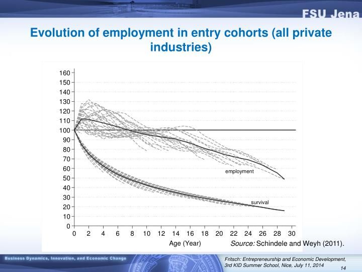 Evolution of employment in entry cohorts (all private industries)