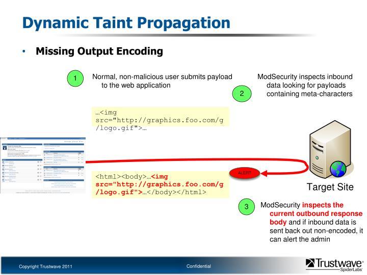 Dynamic Taint Propagation