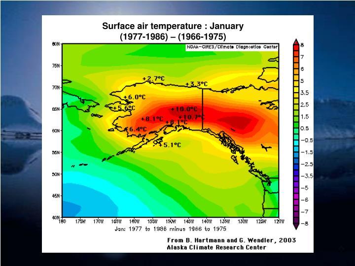 Surface air temperature : January