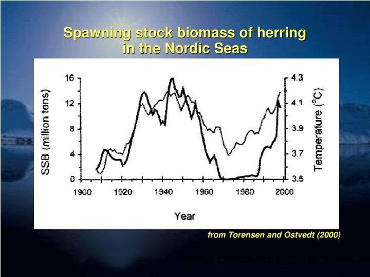 Spawning stock biomass of herring