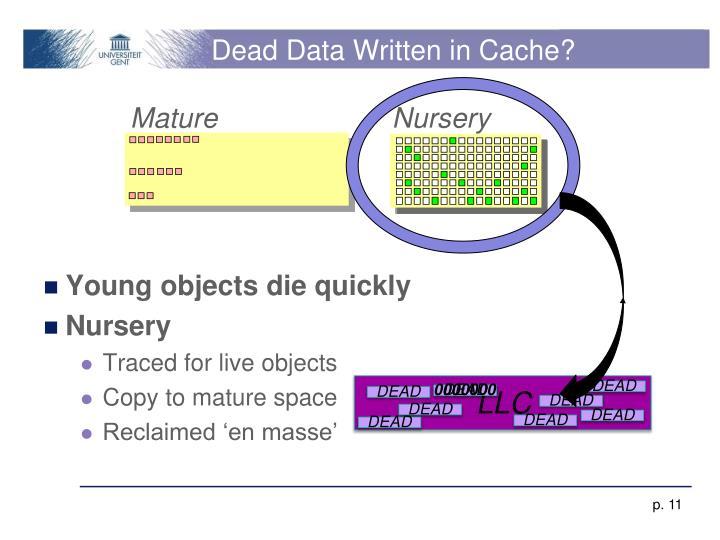 Dead Data Written in Cache?