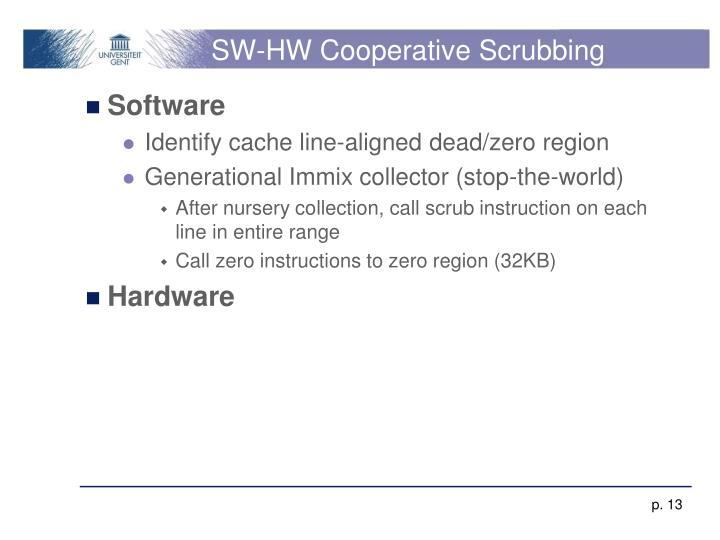 SW-HW Cooperative Scrubbing