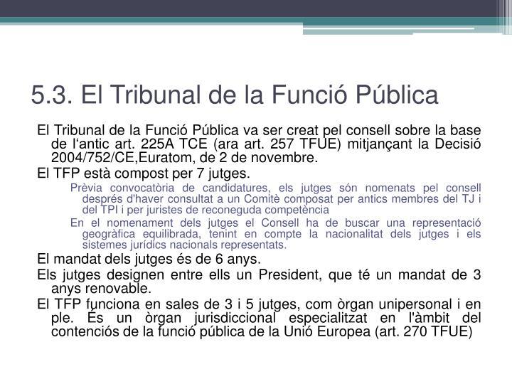 5.3. El Tribunal de la Funció Pública