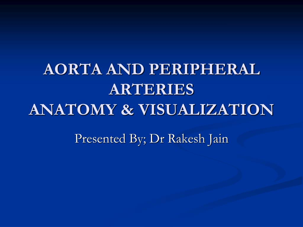 Ppt Aorta And Peripheral Arteries Anatomy Visualization