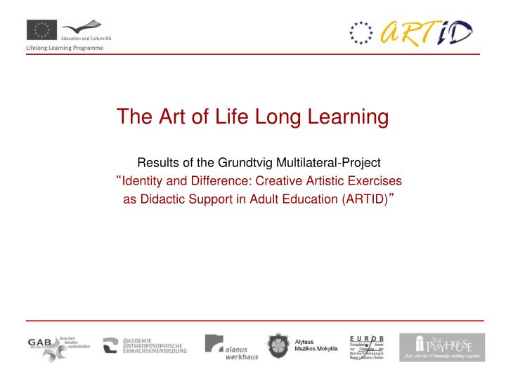 the art of life long learning n.