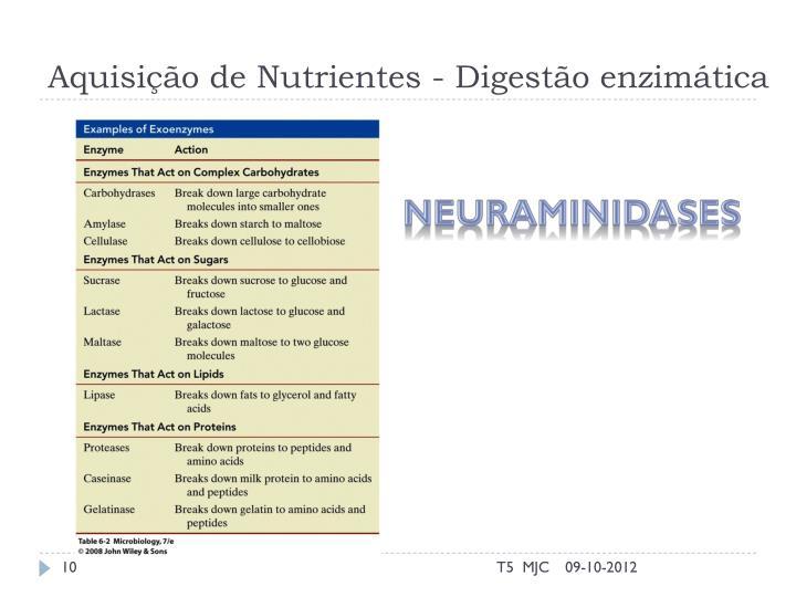 Aquisição de Nutrientes - Digestão enzimática