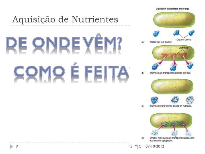 Aquisição de Nutrientes