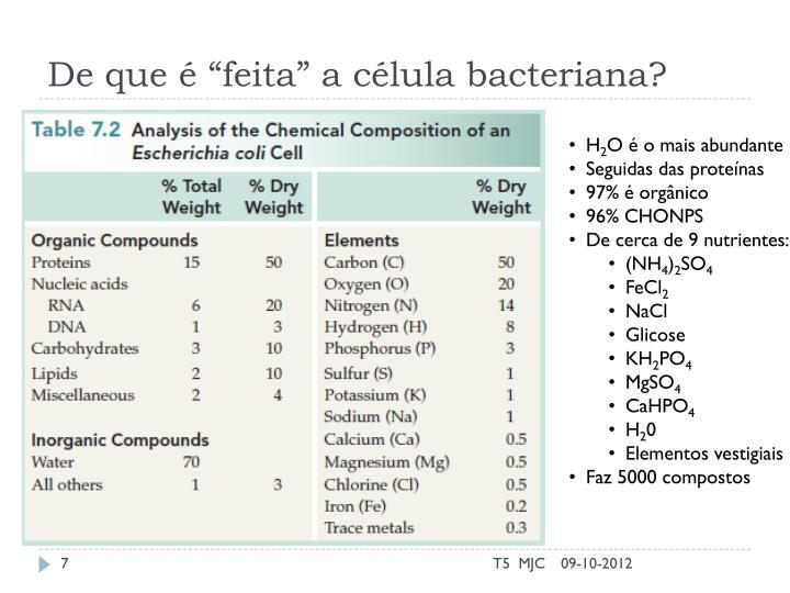 """De que é """"feita"""" a célula bacteriana?"""