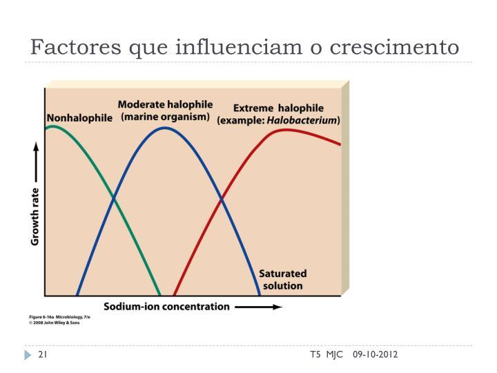 Factores que influenciam o crescimento