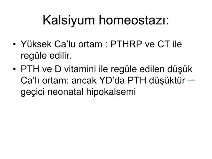 Kalsiyum homeostazı: