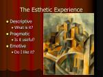 the esthetic experience