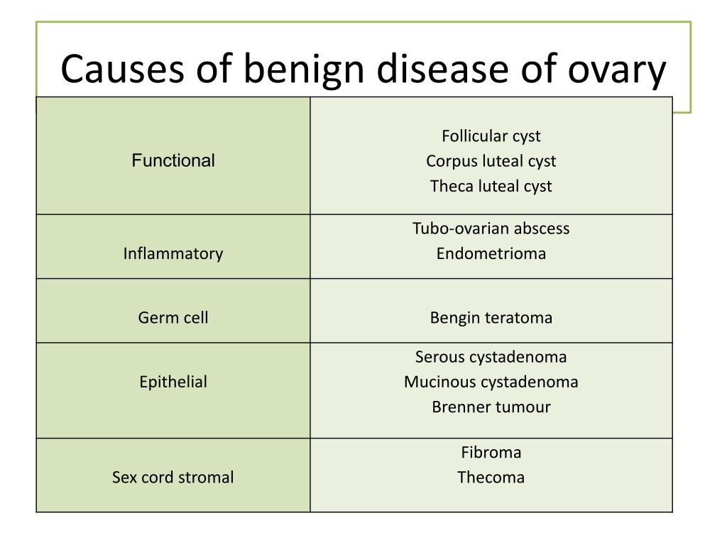 PPT - Diseases of the ovary PowerPoint Presentation - ID:5381690