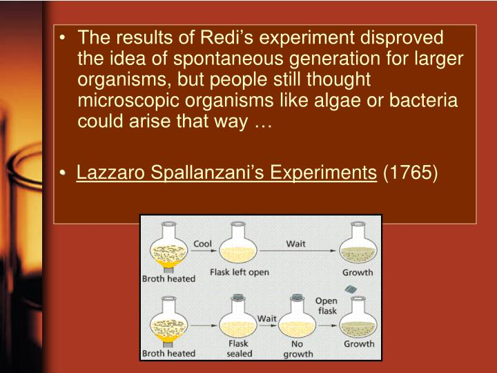The results of Redi's experiment disproved the idea of spontaneous generation for larger organisms, but people still thought microscopic organisms like algae or bacteria could arise that way …