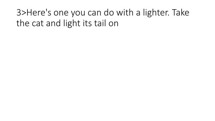 3>Here's one you can do with a lighter. Take the cat and light its tail on