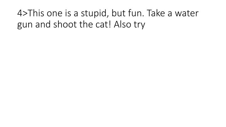 4>This one is a stupid, but fun. Take a water gun and shoot the cat! Also try