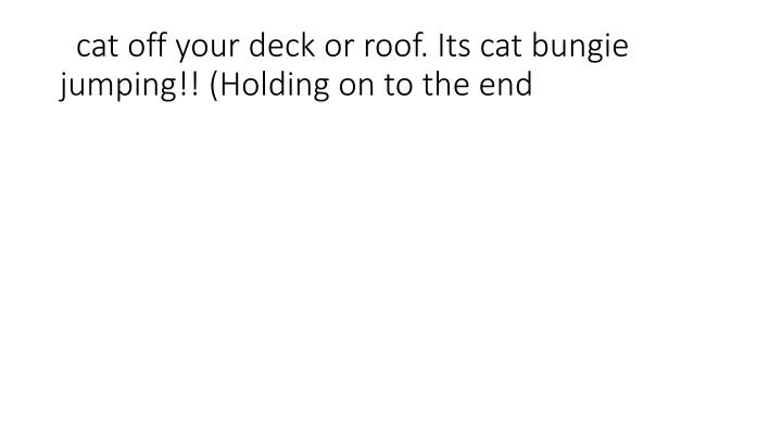 cat off your deck or roof. Its cat bungie jumping!! (Holding on to the end