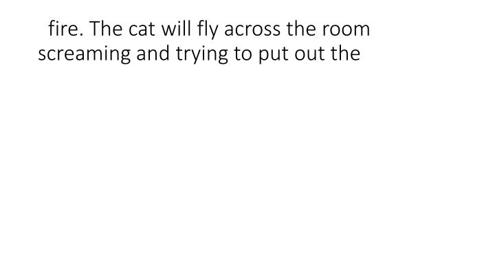 fire. The cat will fly across the room screaming and trying to put out the