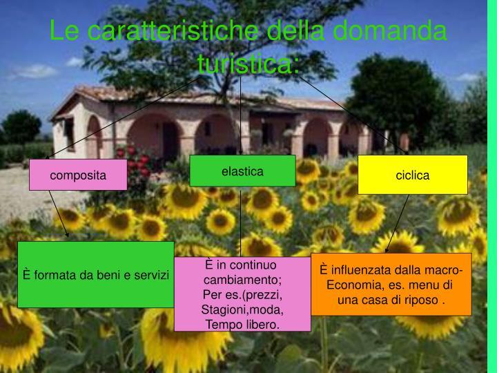 Le caratteristiche della domanda turistica