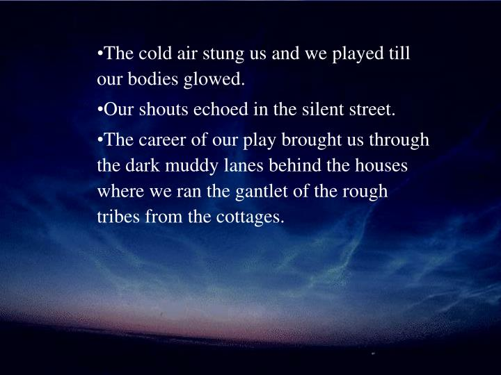 The cold air stung us and we played till our bodies glowed.