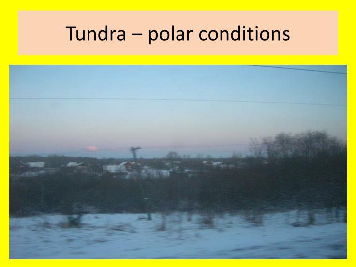 Tundra – polar conditions