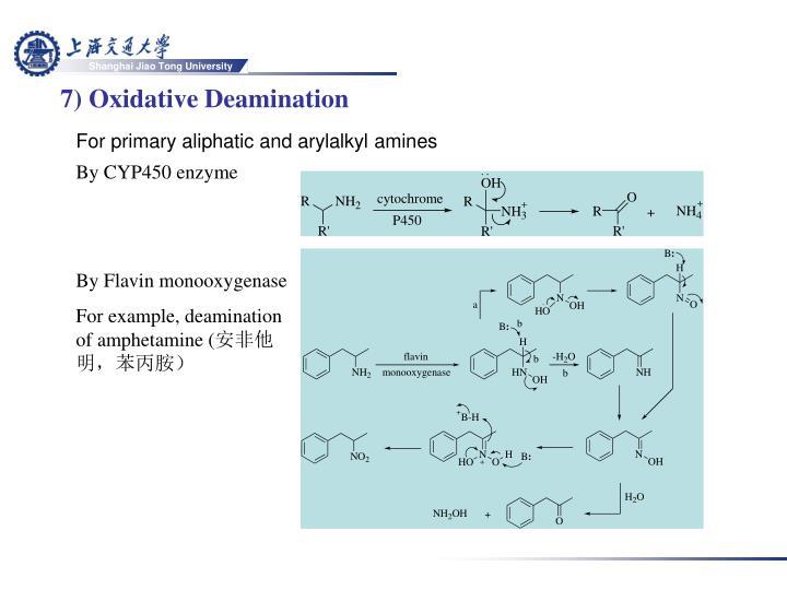 7) Oxidative Deamination