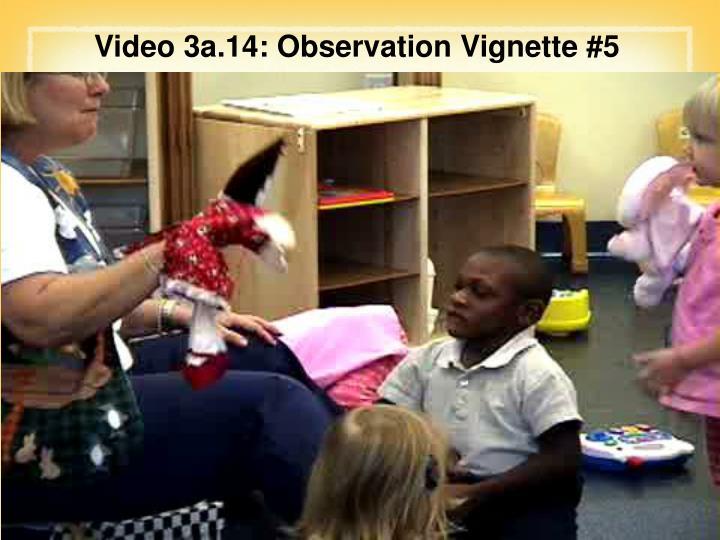 Video 3a.14: Observation Vignette #5