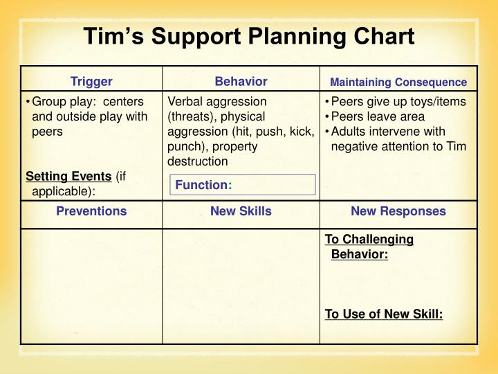 Tim's Support Planning Chart