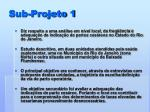 sub projeto 1