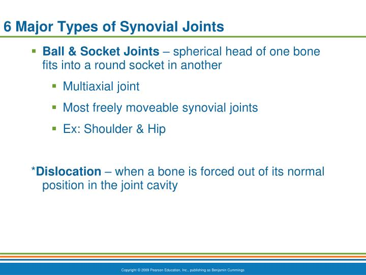 6 Major Types of Synovial Joints