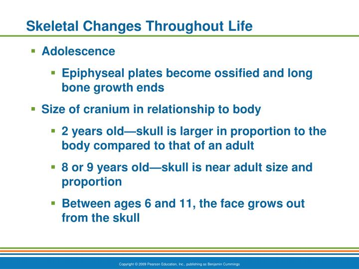 Skeletal Changes Throughout Life