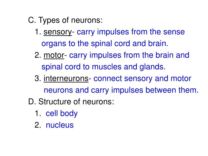 C. Types of neurons: