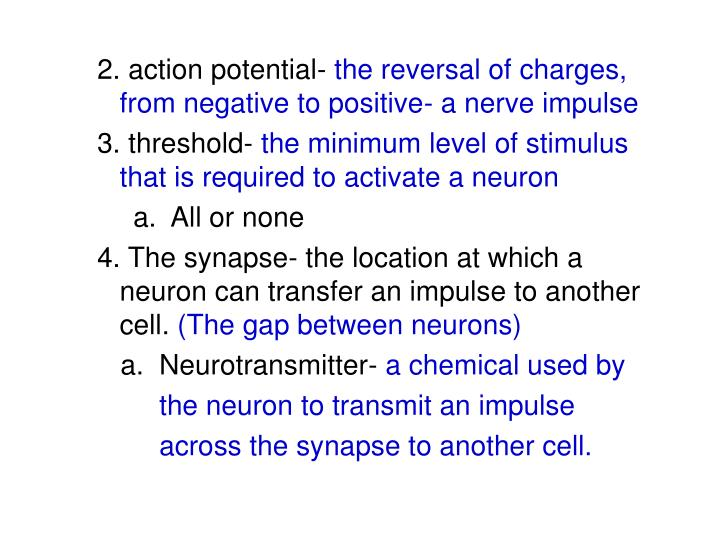 2. action potential-
