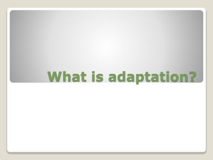 what is adaptation n.