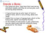 inside a bone